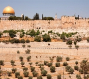 The Temple Mount as Seen from the Mount of Olives​