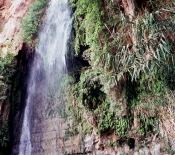 Ein Gedi: Waterfall in Nahal David