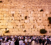 ​A Crown in the Wailing Wall